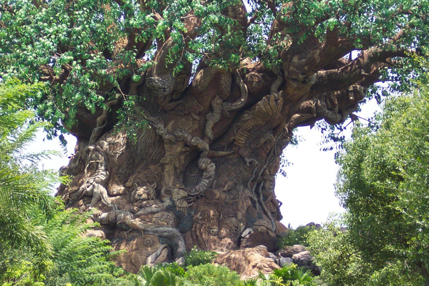 Lagniappe Walt Disney World Photographs