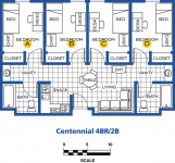 Centennial Village four bedroom room layout