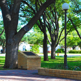 Angelo State's Memorial Oak Grove
