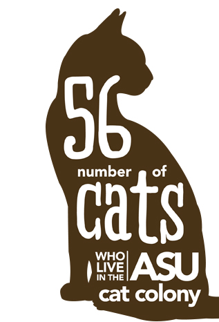 56: Number of cats who live in the ASU cat colony