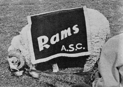 Ram Mascot in new ASC attire sees nothing to get excited about as Rams begin contest with Texas Lutheran College. Rams came out on top 34-0. From Nov. 5, 1965 Ram Page