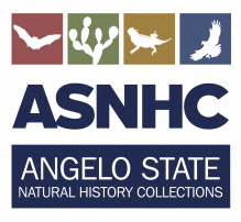 Angelo State Natural History Collections Logo