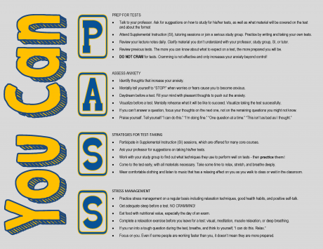 You Can P.A.S.S. info-graphic