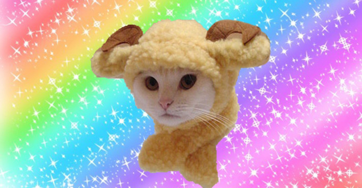 I like a cheerful Ram Cat image as much as the next person, but using a decorative image like thi...