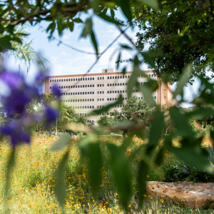 Nature shots with Concho Hall in the background